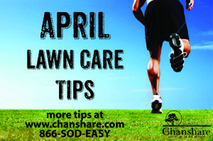 April Lawn Care Tips